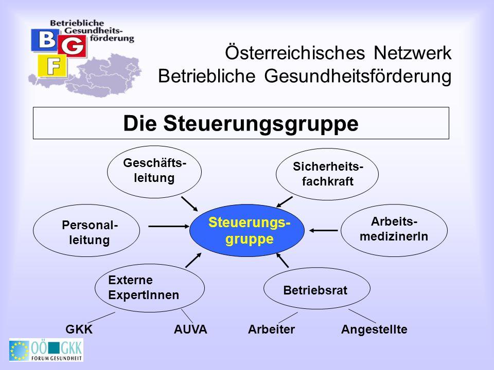 Österreichisches Netzwerk Betriebliche Gesundheitsförderung Qualitätsmerkmale von BGF (2) Nachhaltigkeit - Messung und Dokumentation der Projekterfahrungen, Zukunftssicherung durch Implementierung in den Regelbetrieb Integration - Aufnahme der BGF-Grundsätze in die Unternehmenspolitik (z.B.