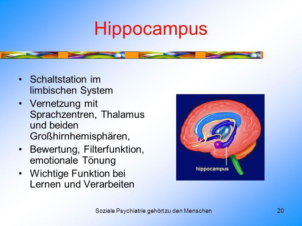 Hippocampus Schaltstation im limbischen System Vernetzung mit Sprachzentren, Thalamus und beiden Großhirnhemisphären, Bewertung, Filterfunktion, emotionale Tönung Wichtige Funktion bei Lernen und Verarbeiten Soziale Psychiatrie gehört zu den Menschen20