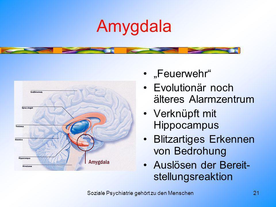 Amygdala Feuerwehr Evolutionär noch älteres Alarmzentrum Verknüpft mit Hippocampus Blitzartiges Erkennen von Bedrohung Auslösen der Bereit- stellungsreaktion Soziale Psychiatrie gehört zu den Menschen21
