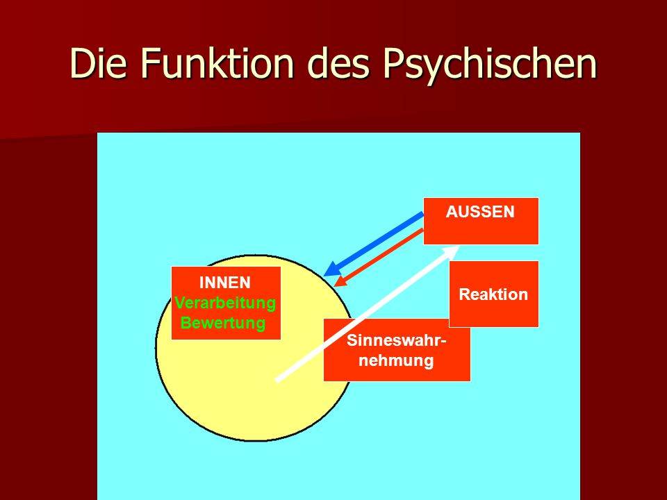Die Funktion des Psychischen AUSSEN INNEN Verarbeitung Bewertung Sinneswahr- nehmung Sinneswahr- nehmung Reaktion