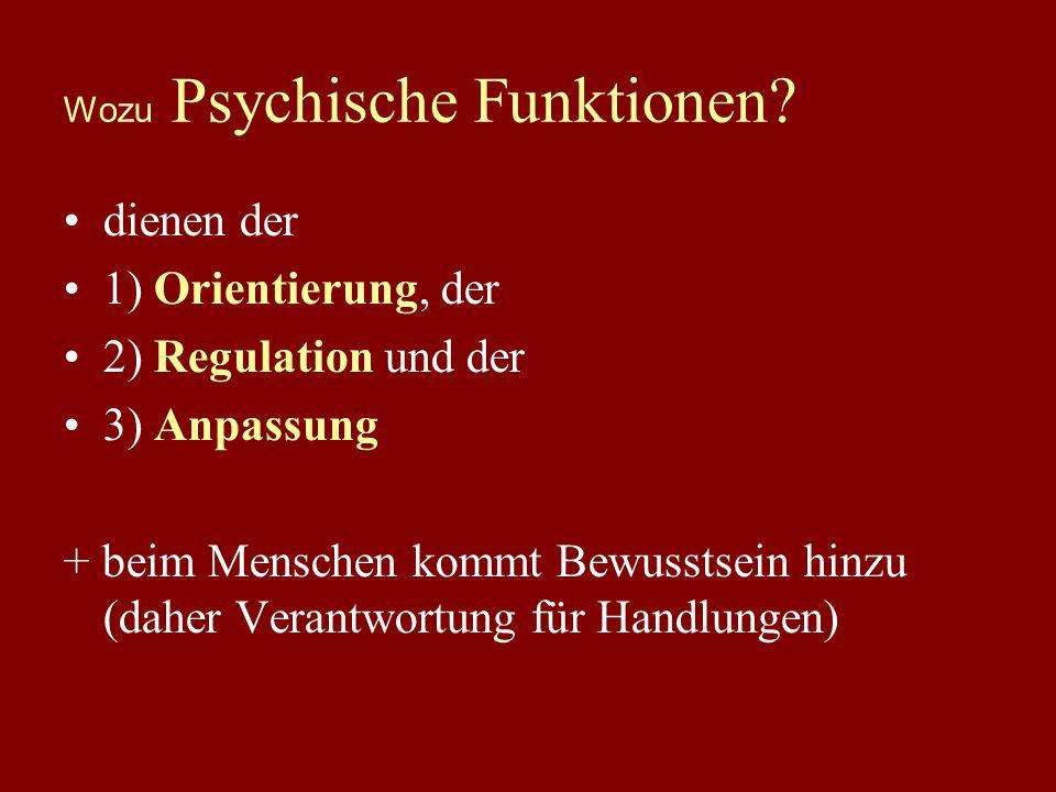 0. Begriffsklärung: Die Funktion des Psychischen AUSSEN (verändert) INNEN Verarbeitung Bewertung Sinneswahr- nehmung Sinneswahr- nehmung Reaktion