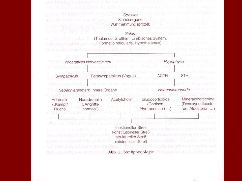 LITERATUR McDougall, Joyce: Theater des Körpers. Verlag Internationale Psychoanalyse, Weinheim 1991 Rorty, Richard: Kontingenz, Ironie und Solidarität