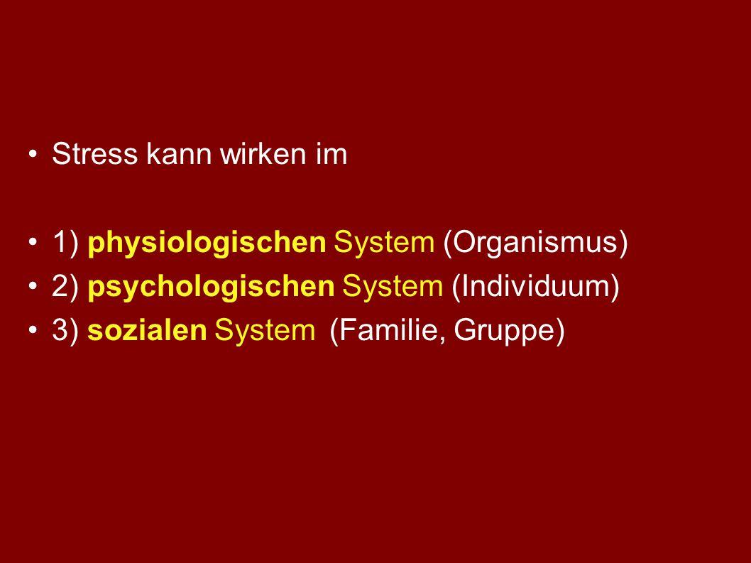 Welche Faktoren bestimmen die individuelle Stress-Resistenz? Individuelle Ressourcen A) aus aktuellen Lebensbedingungen B) aus persönlicher Entwicklun