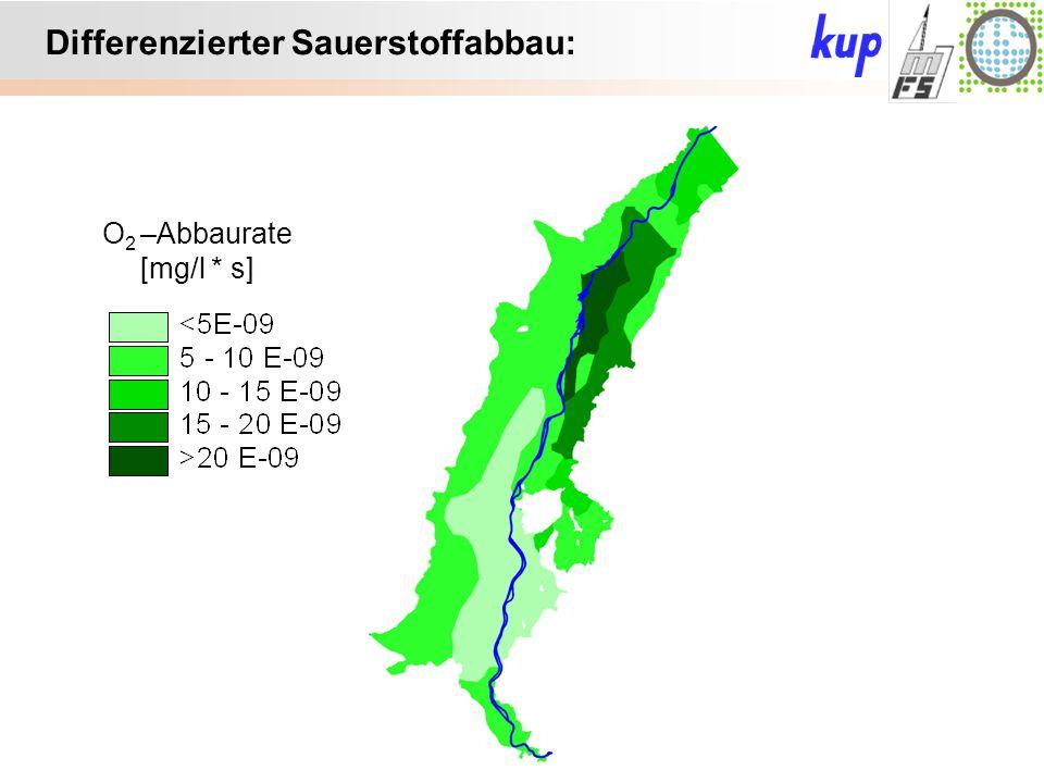 Untersuchungsgebiet: Differenzierter Sauerstoffabbau: O 2 –Abbaurate [mg/l * s]