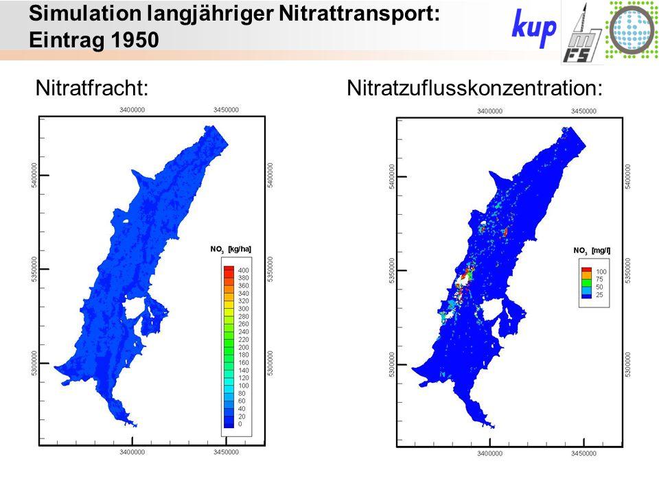 Untersuchungsgebiet: Simulation langjähriger Nitrattransport: Eintrag 1950 Nitratfracht:Nitratzuflusskonzentration: