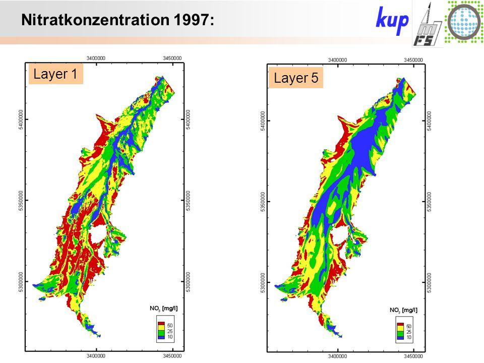 Untersuchungsgebiet: Layer 1 Layer 5 Nitratkonzentration 1997: