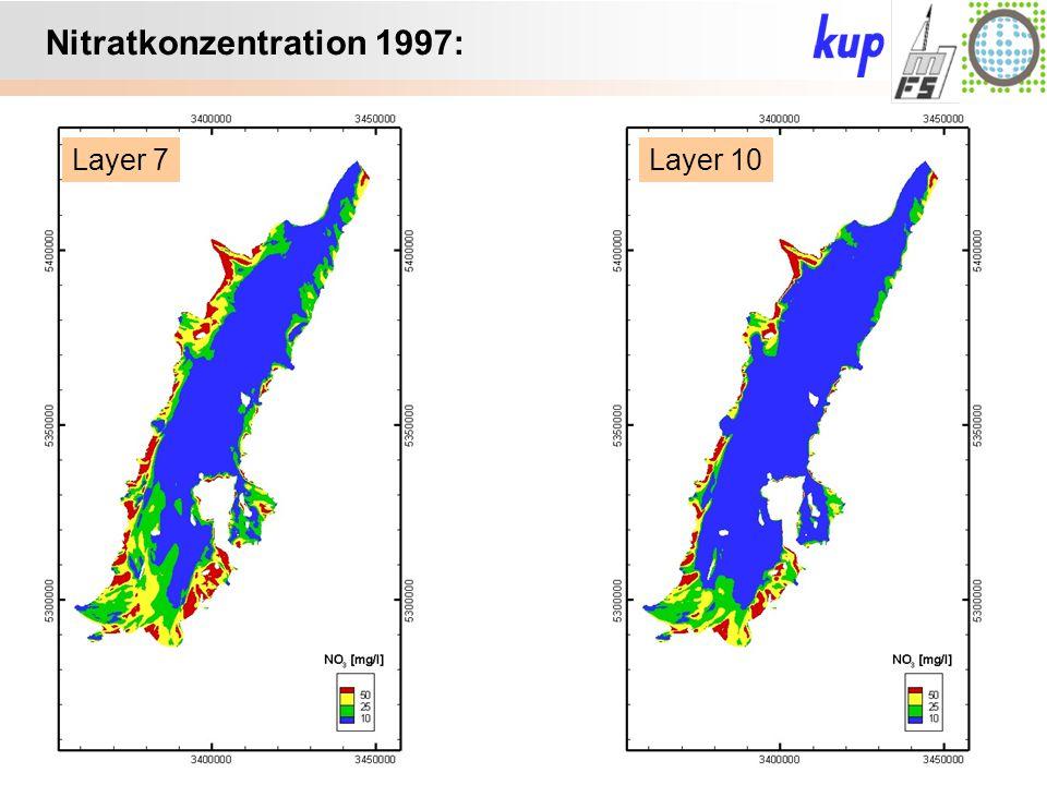 Untersuchungsgebiet: Layer 7Layer 10 Nitratkonzentration 1997: