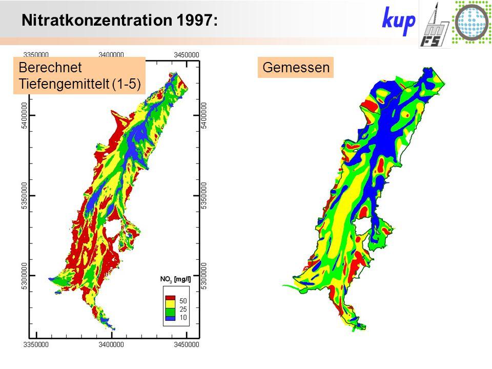 Untersuchungsgebiet: Nitratkonzentration 1997: GemessenBerechnet Tiefengemittelt (1-5)