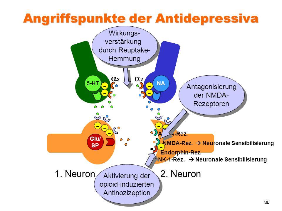 Angriffspunkte der Antidepressiva Glu/ SP AMPA-Rez.