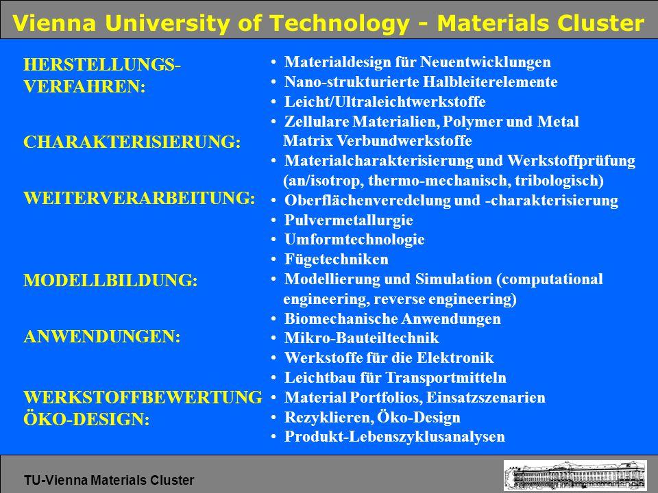 Vienna University of Technology - Materials Cluster Materialdesign für Neuentwicklungen Nano-strukturierte Halbleiterelemente Leicht/Ultraleichtwerkst