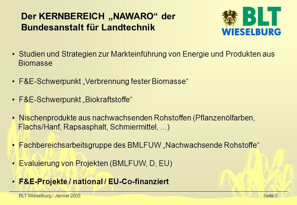 BLT Wieselburg / Jänner 2003Seite 5 Studien und Strategien zur Markteinführung von Energie und Produkten aus Biomasse F&E-Schwerpunkt Verbrennung fest