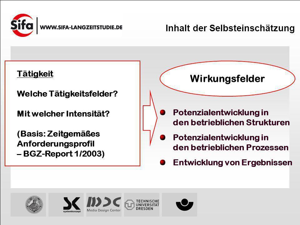 Inhalt der Selbsteinschätzung Tätigkeit Welche Tätigkeitsfelder? Mit welcher Intensität? (Basis: Zeitgemäßes Anforderungsprofil – BGZ-Report 1/2003) W