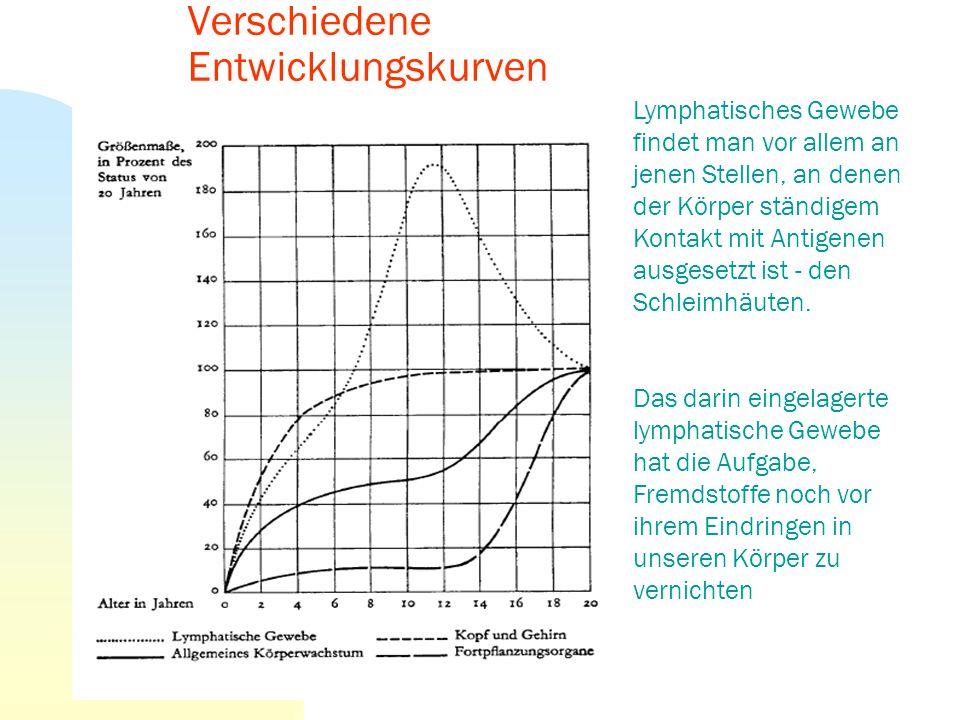 2. Leistungsfähigkeit- Merkmale Körperlicher BereichMotorischer Seelisch- geistiger Bereich (affektiv- kognitiv)Sozialer Bereich (sozio- integrativ) E