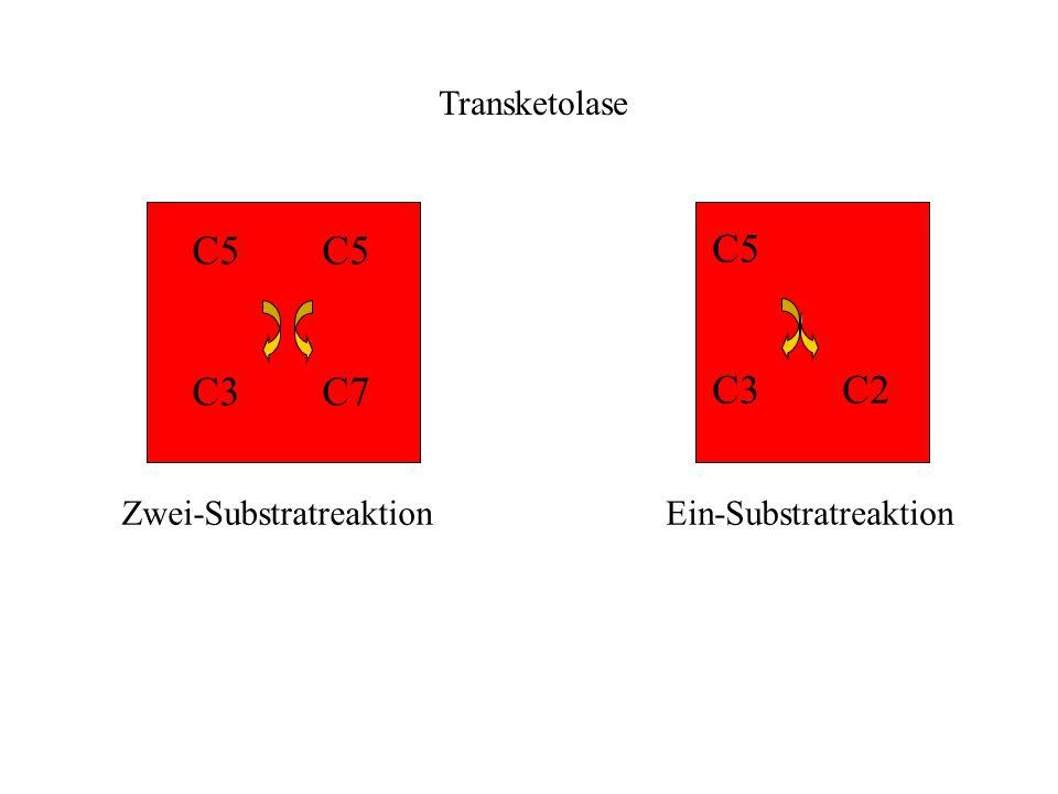 C5 C3 C7 C5 C3 C2 Zwei-SubstratreaktionEin-Substratreaktion Transketolase