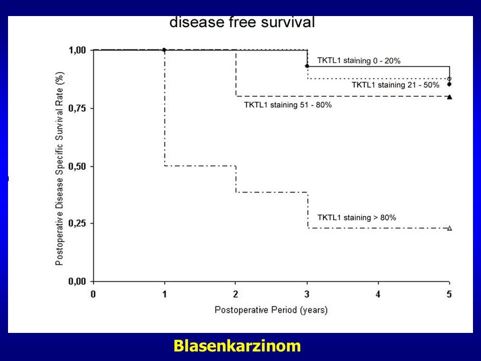 nicht-invasives invasives Blasenkarzinom