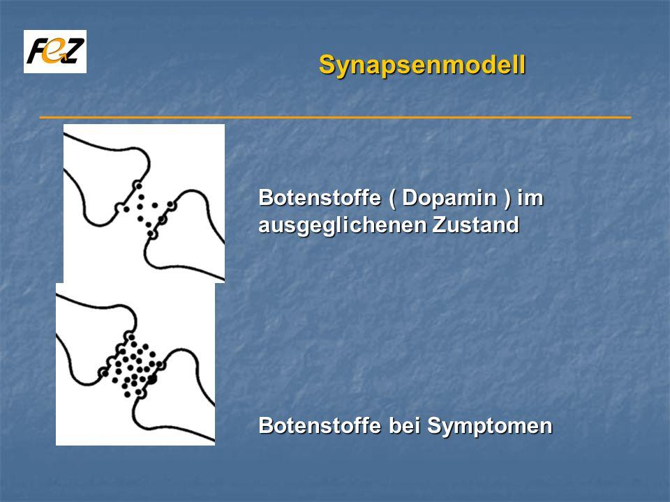 Synapsenmodell Botenstoffe ( Dopamin ) im ausgeglichenen Zustand Botenstoffe bei Symptomen