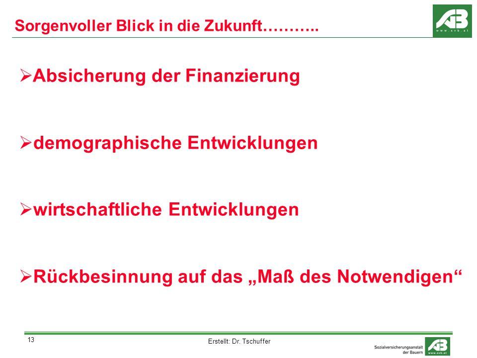 Erstellt: Dr. Tschuffer 13 Sorgenvoller Blick in die Zukunft………..