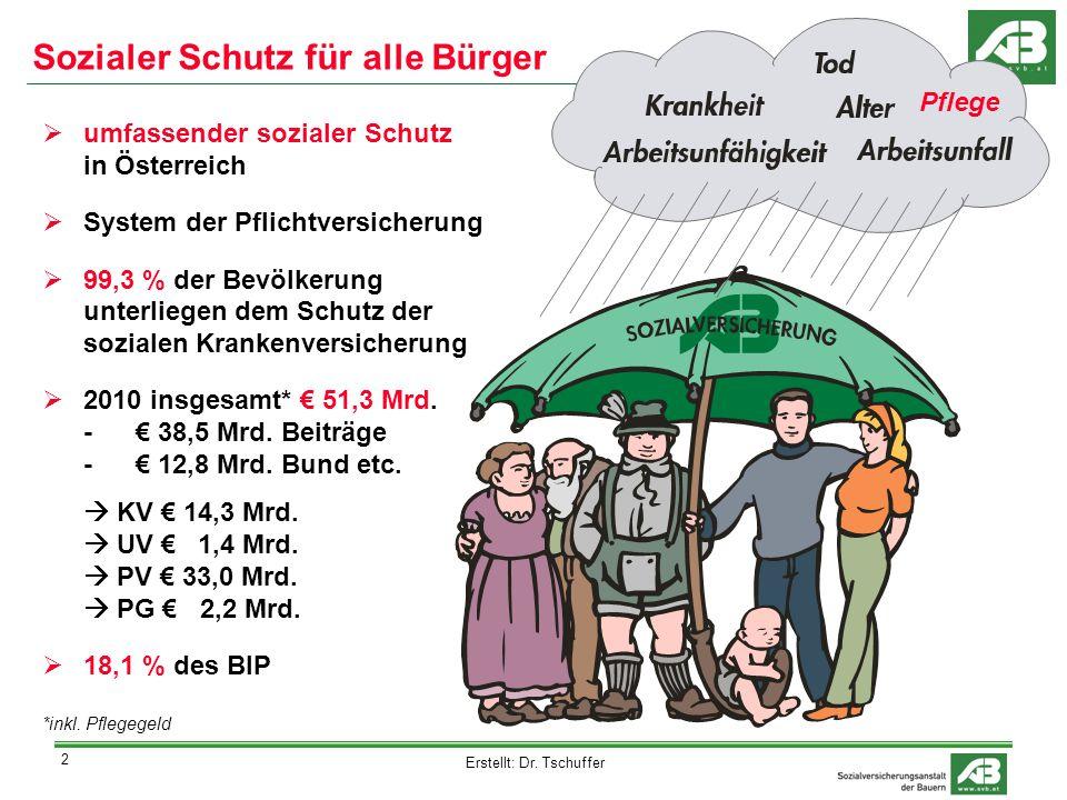 Erstellt: Dr.Tschuffer 13 Sorgenvoller Blick in die Zukunft………..