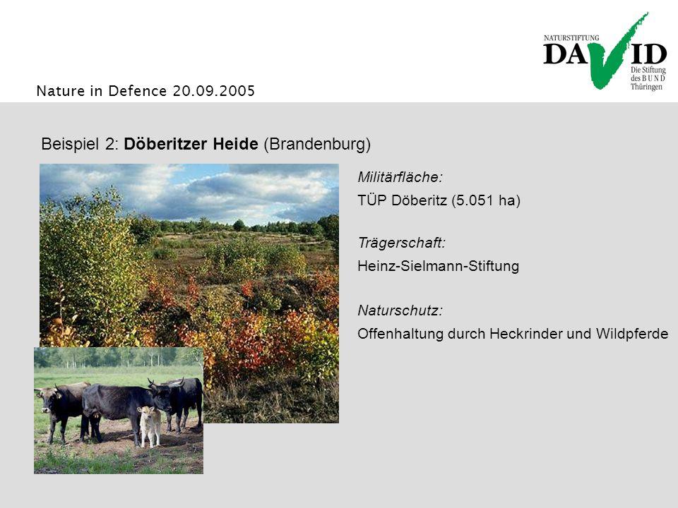 Nature in Defence 20.09.2005 Naturschutz: Offenhaltung durch Heckrinder und Wildpferde Beispiel 2: Döberitzer Heide (Brandenburg) Trägerschaft: Heinz-Sielmann-Stiftung Militärfläche: TÜP Döberitz (5.051 ha)