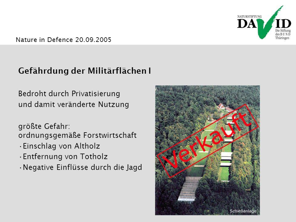 Nature in Defence 20.09.2005 Gefährdung der Militärflächen I Bedroht durch Privatisierung und damit veränderte Nutzung größte Gefahr: ordnungsgemäße Forstwirtschaft Einschlag von Altholz Entfernung von Totholz Negative Einflüsse durch die Jagd