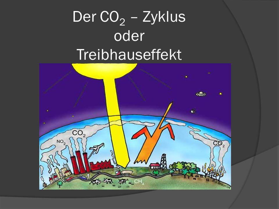 Der CO 2 – Zyklus oder Treibhauseffekt