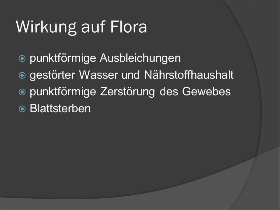 Wirkung auf Flora punktförmige Ausbleichungen gestörter Wasser und Nährstoffhaushalt punktförmige Zerstörung des Gewebes Blattsterben