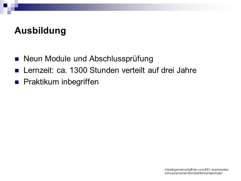 Ausbildung Neun Module und Abschlussprüfung Lernzeit: ca.