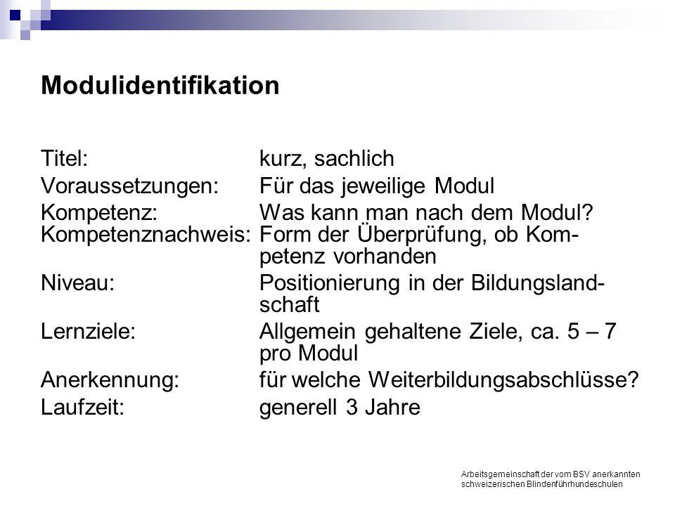 Modulidentifikation Titel:kurz, sachlich Voraussetzungen:Für das jeweilige Modul Kompetenz:Was kann man nach dem Modul.