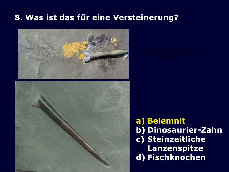 7.Wo ist am meisten Kohle gespeichert. a)Atmosphäre b)Meerwasser inkl.