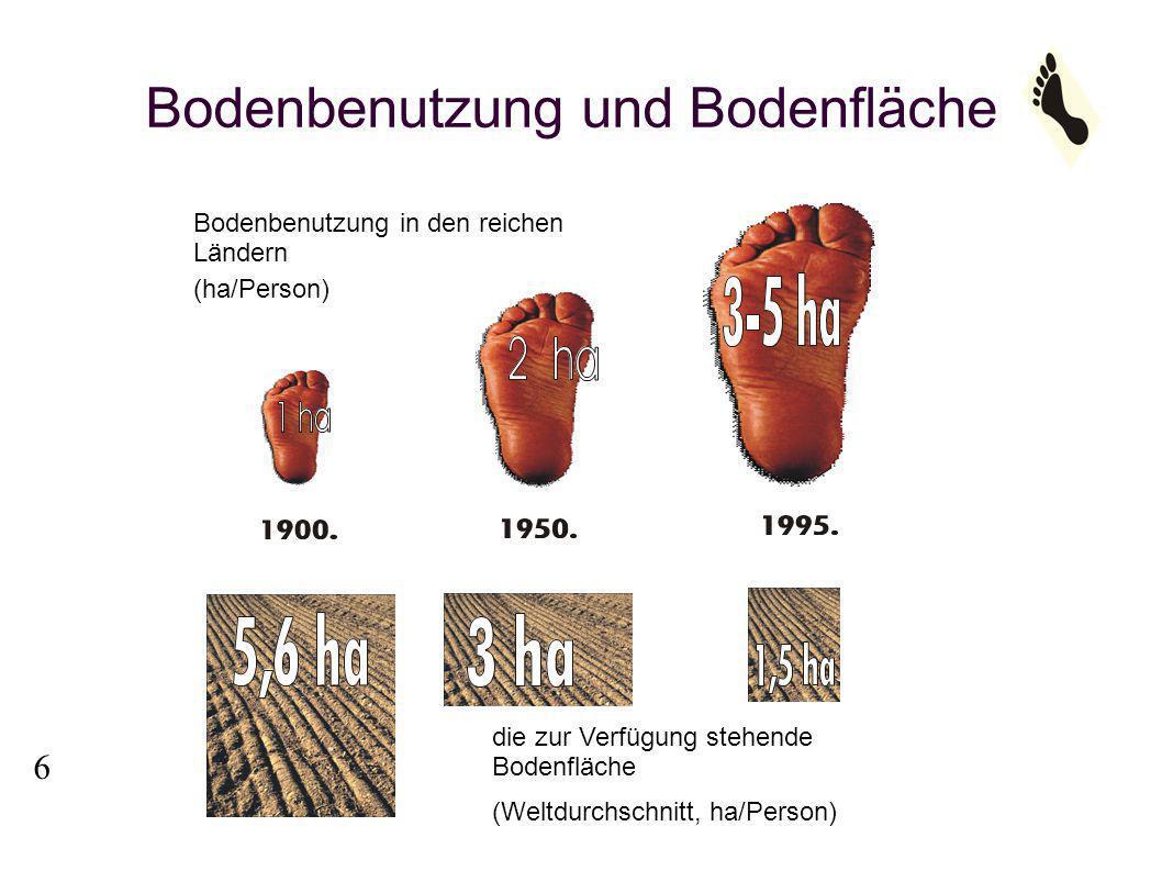 Bericht Lebender Planet 2004 ÖKOLOGISCHER FUSSABDRUCK DER MENSCHHEIT 7