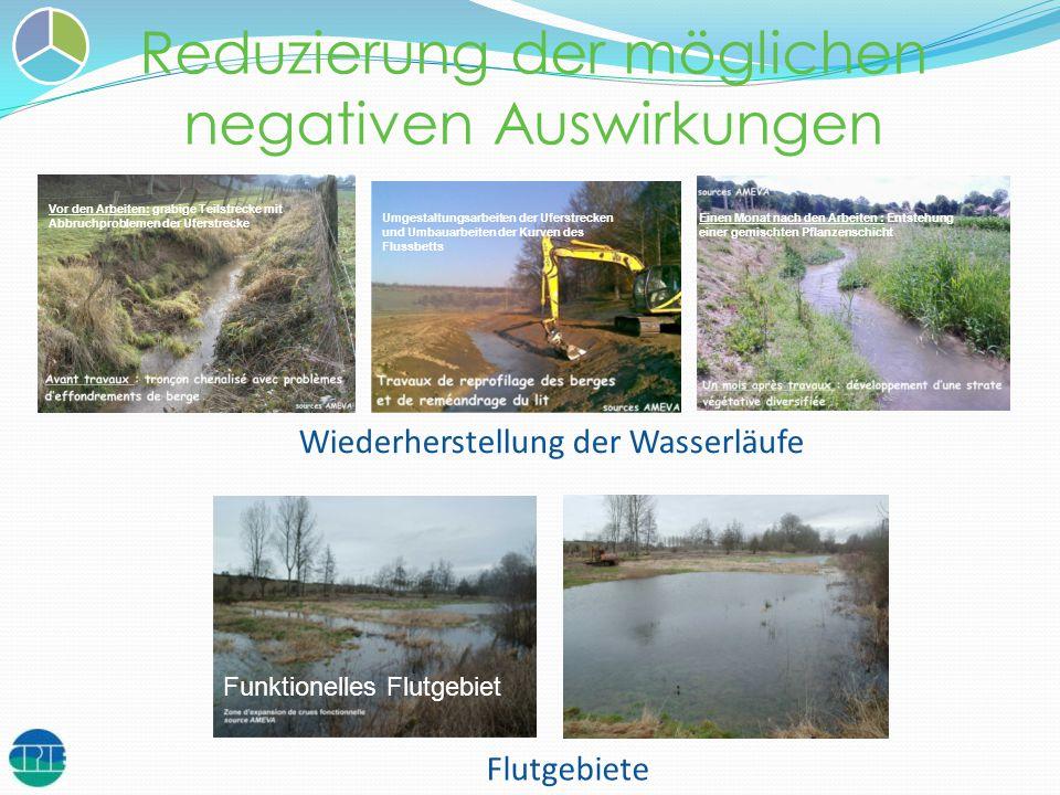 Reduzierung der möglichen negativen Auswirkungen Flutgebiete Wiederherstellung der Wasserläufe Funktionelles Flutgebiet Vor den Arbeiten: grabige Teil