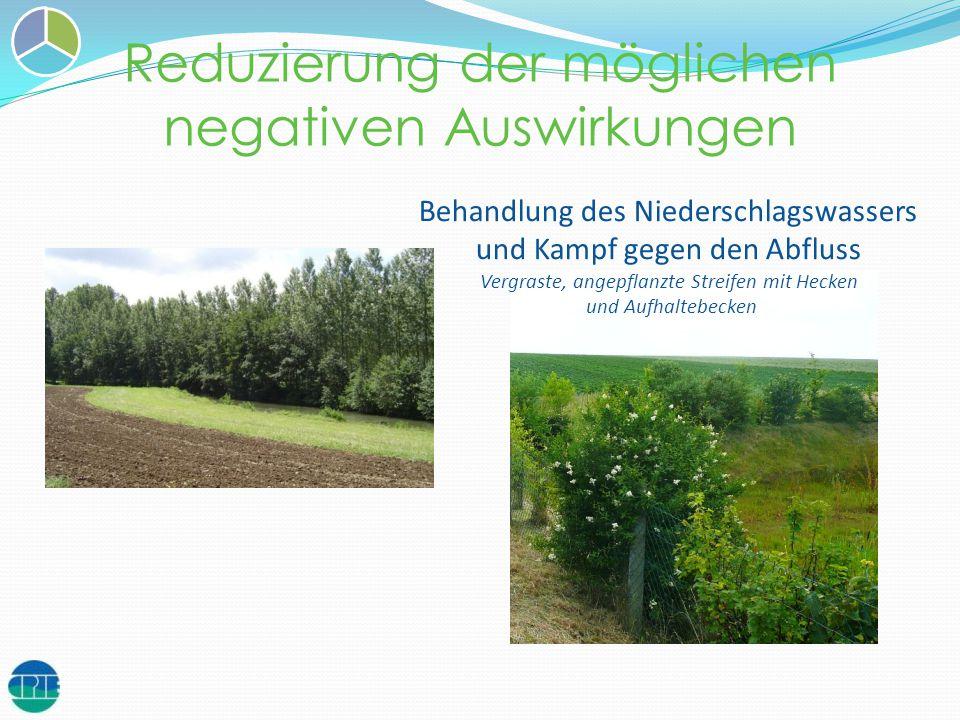 Reduzierung der möglichen negativen Auswirkungen Behandlung des Niederschlagswassers und Kampf gegen den Abfluss Vergraste, angepflanzte Streifen mit