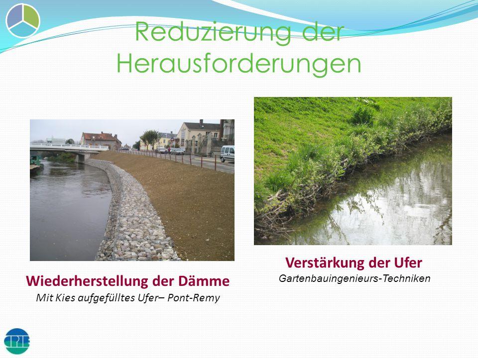 Reduzierung der Herausforderungen Diguettes et merlons Verstärkung der Ufer Gartenbauingenieurs-Techniken Wiederherstellung der Dämme Mit Kies aufgefü