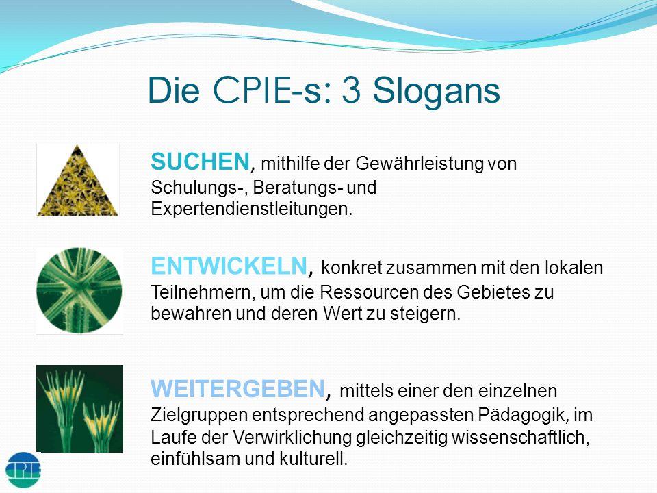 Die CPIE -s : 3 Slogans SUCHEN, mithilfe der Gewährleistung von Schulungs-, Beratungs- und Expertendienstleitungen. ENTWICKELN, konkret zusammen mit d