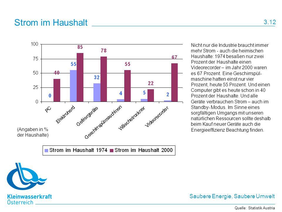 Saubere Energie, Saubere Umwelt Strom im Haushalt Nicht nur die Industrie braucht immer mehr Strom - auch die heimischen Haushalte: 1974 besaßen nur zwei Prozent der Haushalte einen Videorecorder – im Jahr 2000 waren es 67 Prozent.