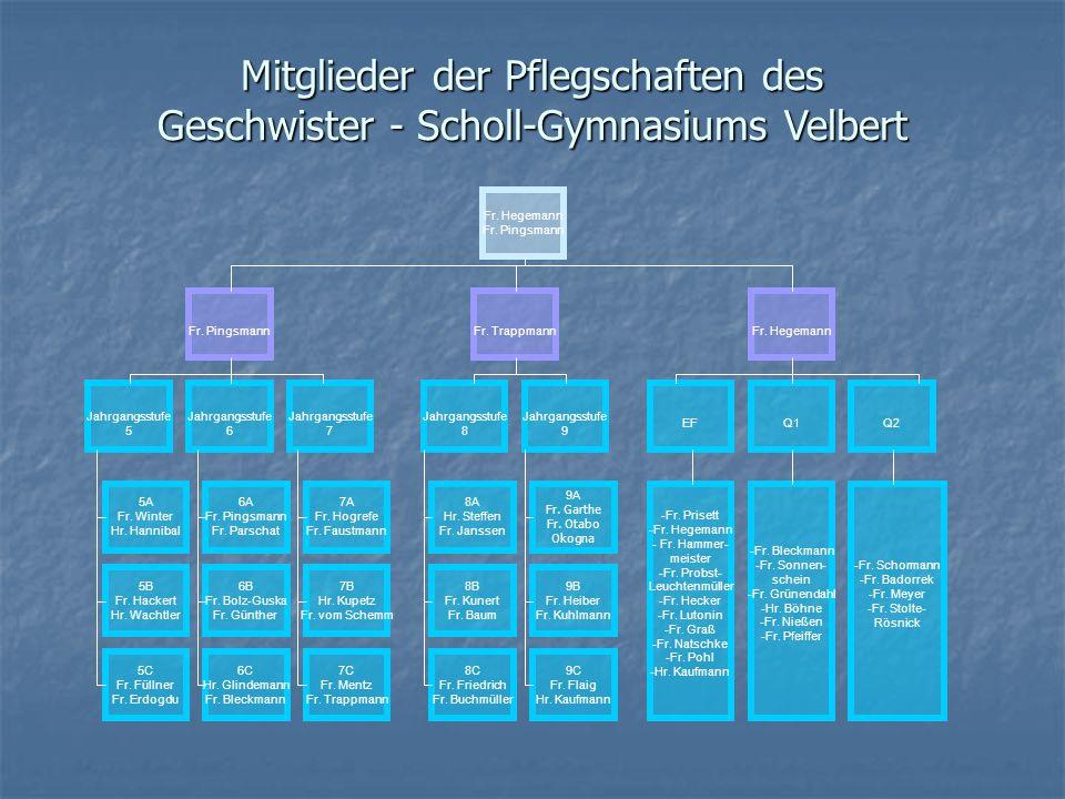 Mitglieder der Pflegschaften des Geschwister - Scholl-Gymnasiums Velbert Fr. Hegemann Fr. Pingsmann Jahrgangsstufe 5 Jahrgangsstufe 8 Jahrgangsstufe 9