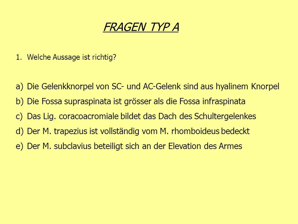 FRAGEN TYP A 1.Welche Aussage ist richtig? a)Die Gelenkknorpel von SC- und AC-Gelenk sind aus hyalinem Knorpel b)Die Fossa supraspinata ist grösser al