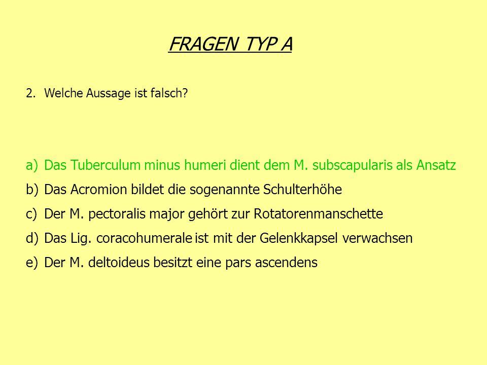 FRAGEN TYP A 2.Welche Aussage ist falsch? a)Das Tuberculum minus humeri dient dem M. subscapularis als Ansatz b)Das Acromion bildet die sogenannte Sch