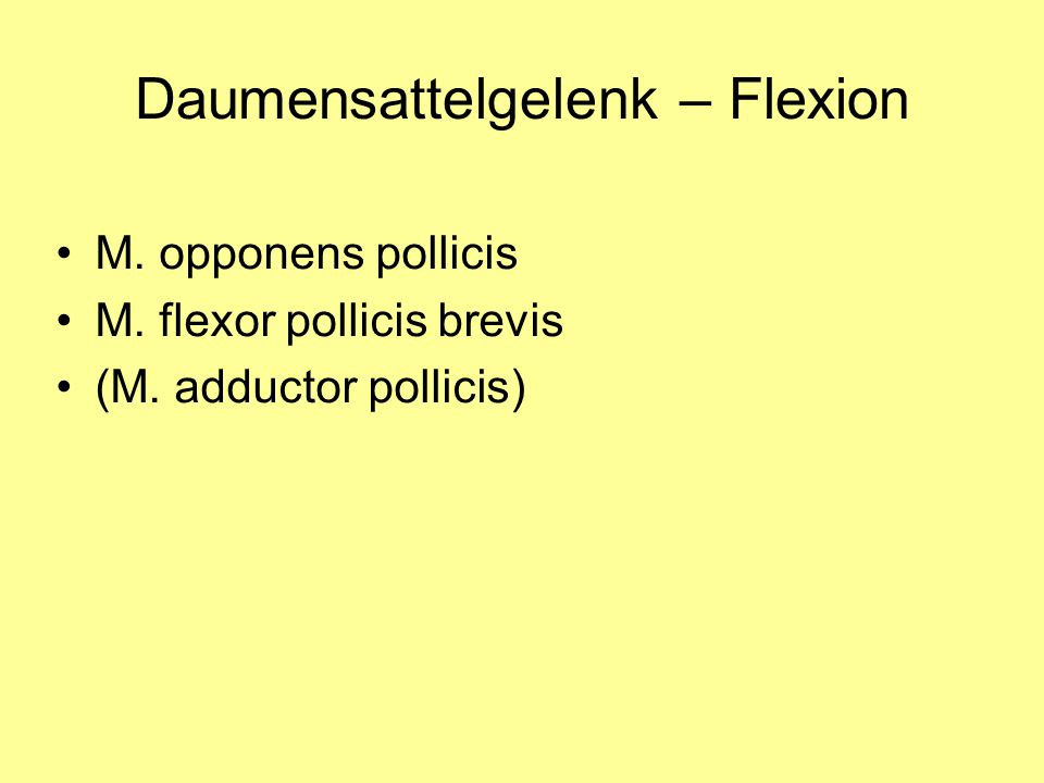 Daumensattelgelenk – Flexion M. opponens pollicis M. flexor pollicis brevis (M. adductor pollicis)