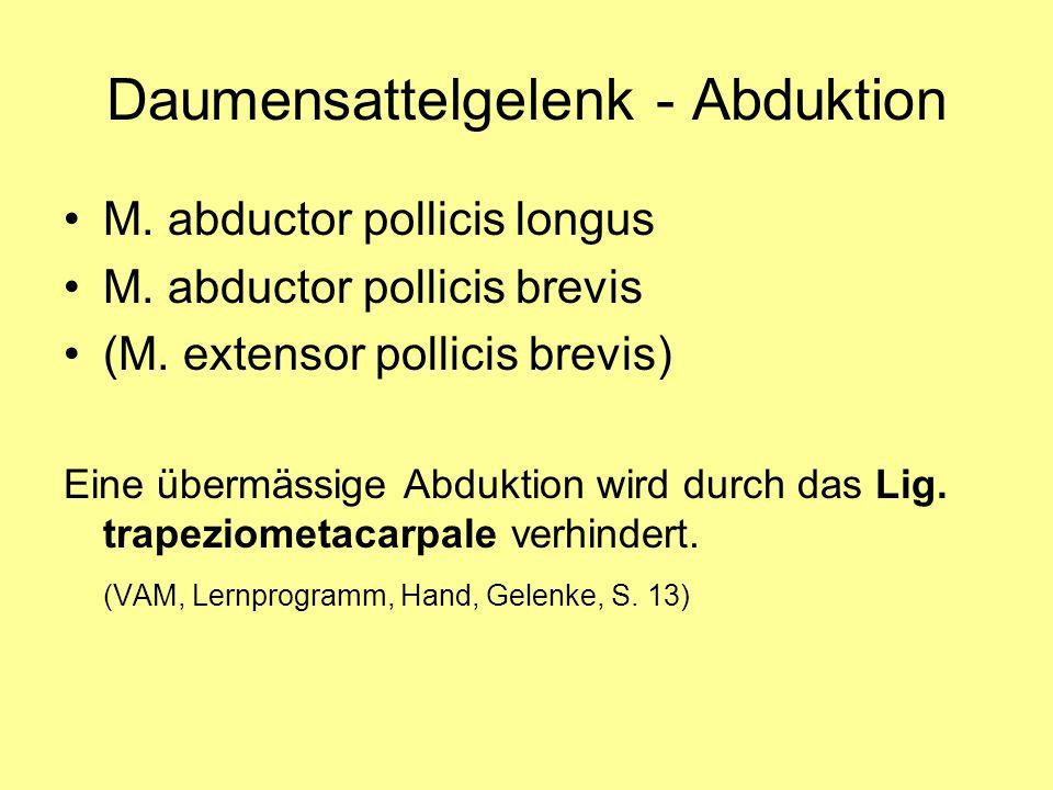 Daumensattelgelenk - Abduktion M. abductor pollicis longus M. abductor pollicis brevis (M. extensor pollicis brevis) Eine übermässige Abduktion wird d
