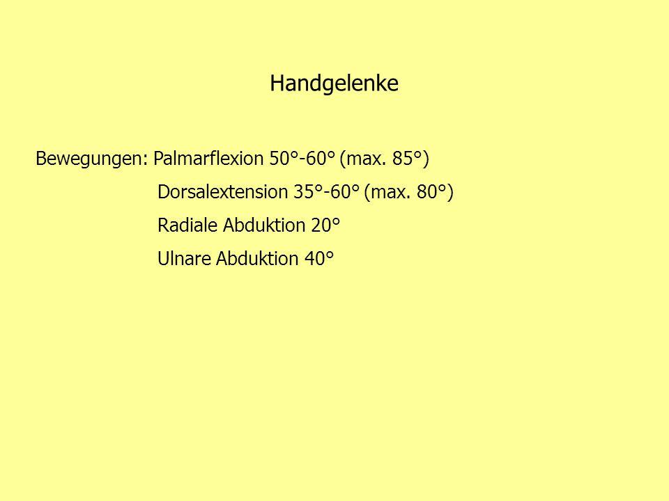 Handgelenke Bewegungen: Palmarflexion 50°-60° (max. 85°) Dorsalextension 35°-60° (max. 80°) Radiale Abduktion 20° Ulnare Abduktion 40°