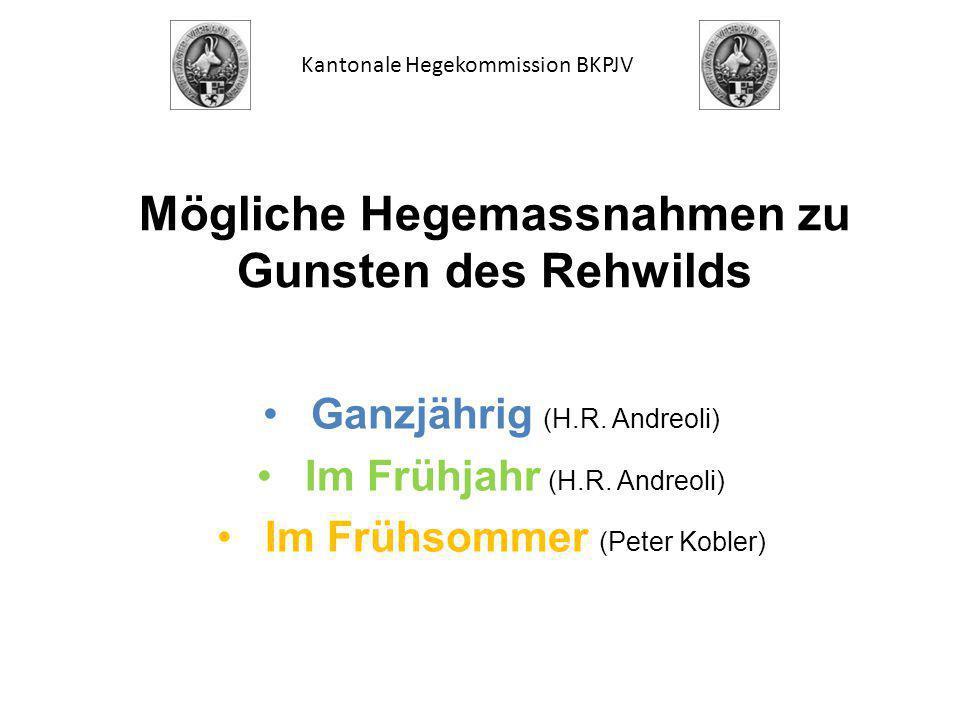 Mögliche Hegemassnahmen zu Gunsten des Rehwilds Ganzjährig (H.R.