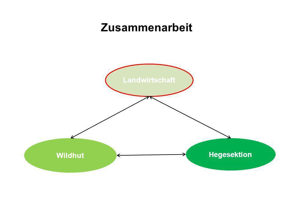 Zusammenarbeit Landwirtschaft Wildhut Hegesektion