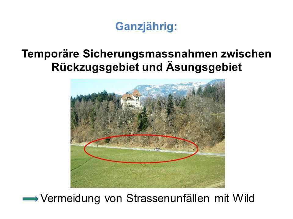 Ganzjährig: Temporäre Sicherungsmassnahmen zwischen Rückzugsgebiet und Äsungsgebiet Vermeidung von Strassenunfällen mit Wild