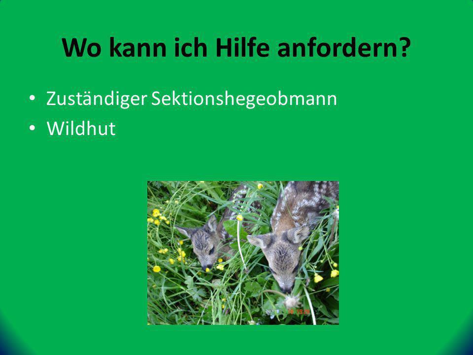 Zuständiger Sektionshegeobmann Wildhut Wo kann ich Hilfe anfordern