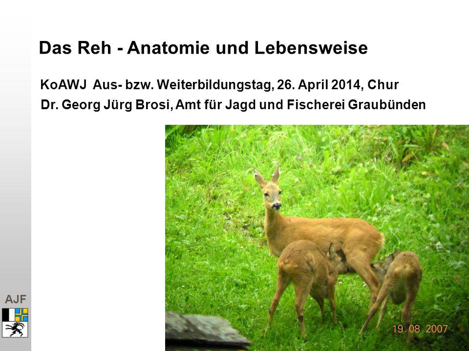 AJF Das Reh - Anatomie und Lebensweise KoAWJ Aus- bzw. Weiterbildungstag, 26. April 2014, Chur Dr. Georg Jürg Brosi, Amt für Jagd und Fischerei Graubü