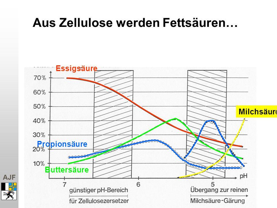 AJF Essigsäure Propionsäure Buttersäure Milchsäure Aus Zellulose werden Fettsäuren…