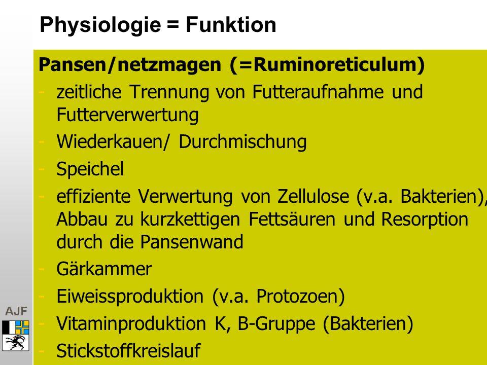 AJF Pansen/netzmagen (=Ruminoreticulum) -zeitliche Trennung von Futteraufnahme und Futterverwertung -Wiederkauen/ Durchmischung -Speichel -effiziente Verwertung von Zellulose (v.a.