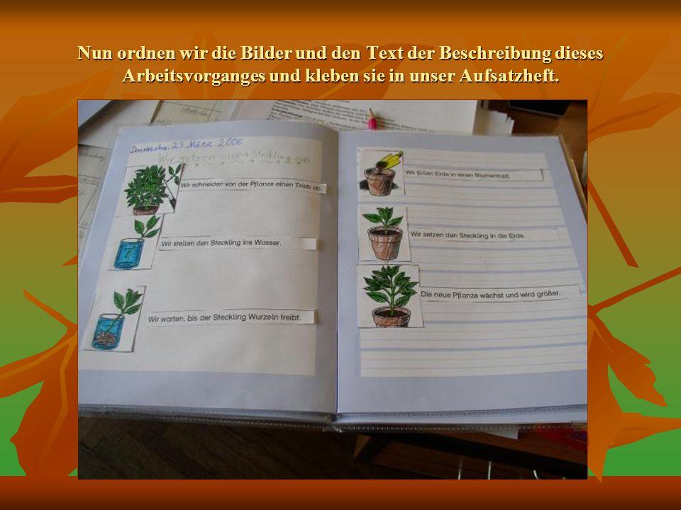 Nun ordnen wir die Bilder und den Text der Beschreibung dieses Arbeitsvorganges und kleben sie in unser Aufsatzheft.