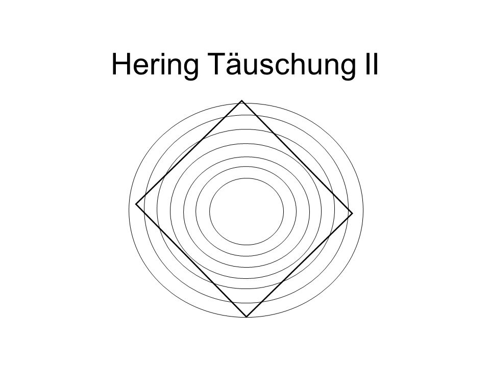 Hering Täuschung II